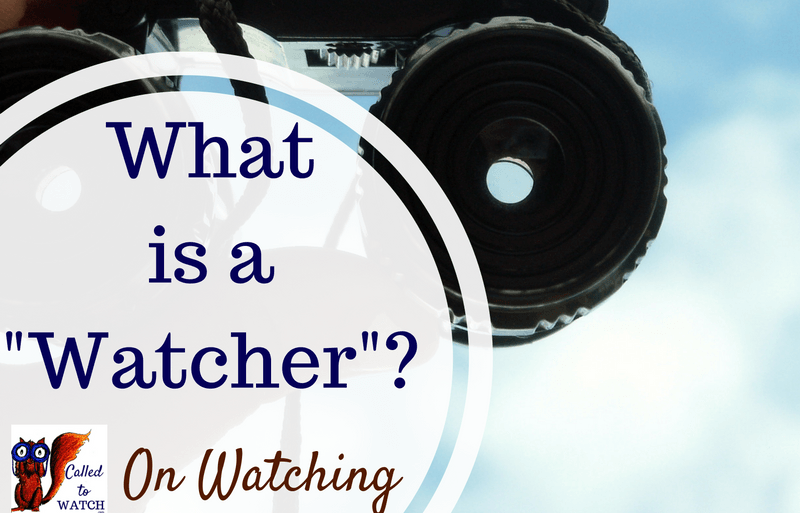 "Caring for someone with a chronic illness: What does it mean to ""Watch""?"