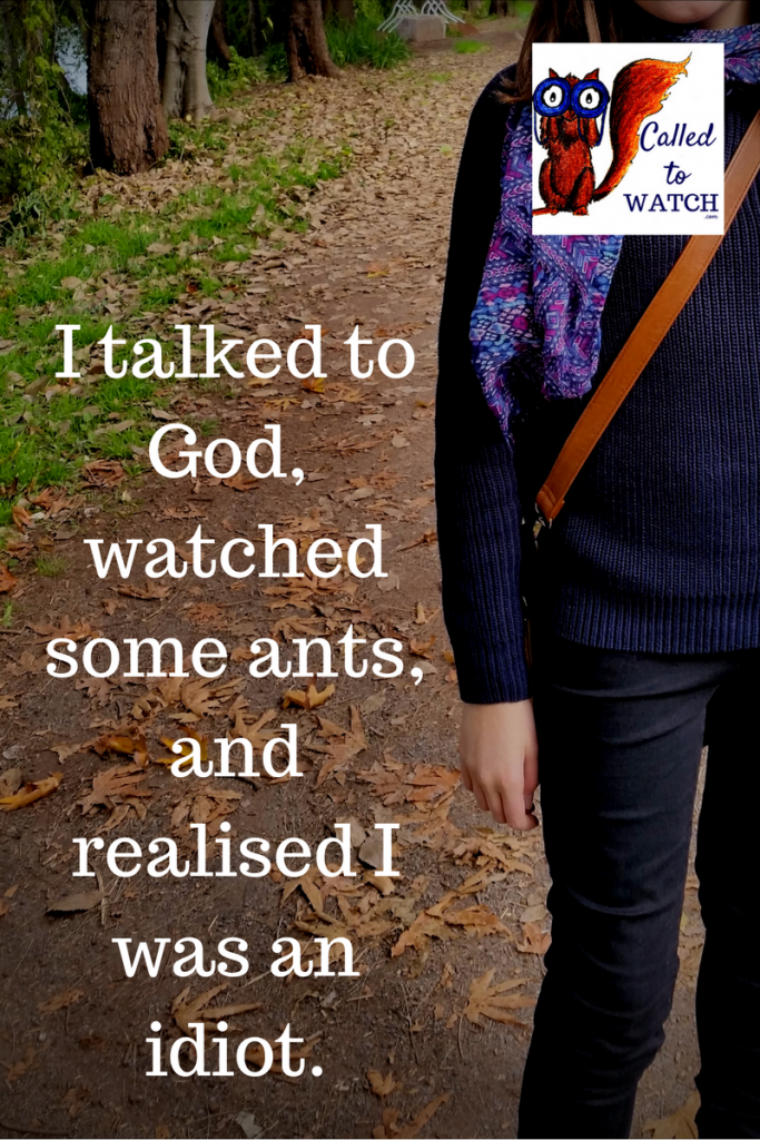 I talked to God, watched some ants and realised I had been an idiot, I was not brave at all.