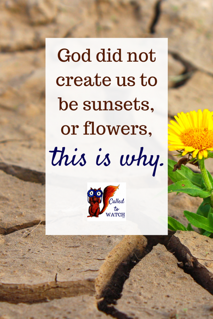 we are immortal www.calledtowatch.com _ #chronicillness #suffering #loneliness #caregiver #pain #caregiving #emotions #faith #God #Hope