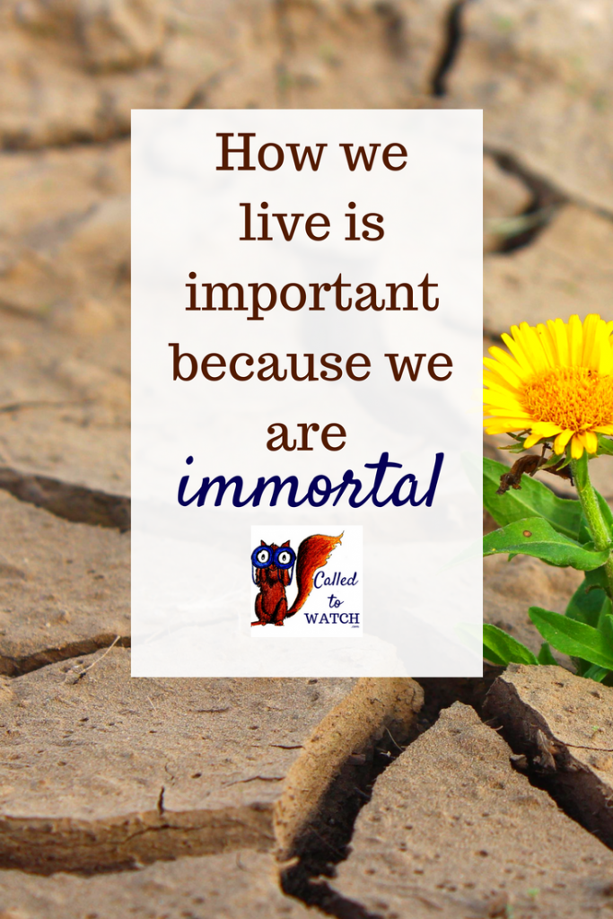 we are immortal www.calledtowatch.com _ #chronicillness #suffering #loneliness #caregiver #pain #caregiving #emotions #faith #God #Hope